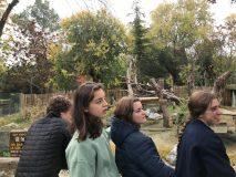 4ºESO-B  visita al Zoo  4-11-2019